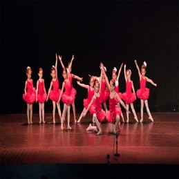 2º Ballet clásico 5-6 años